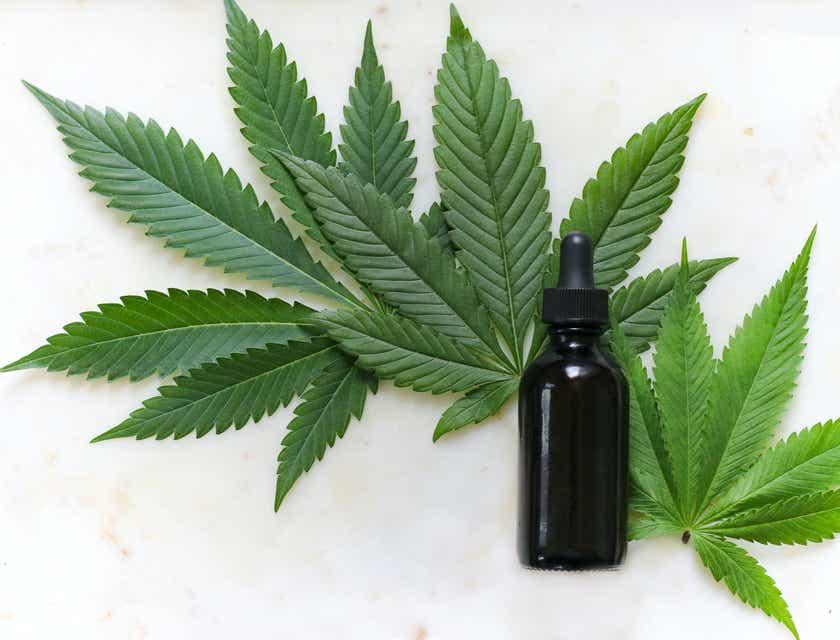 Cannabis Business Names