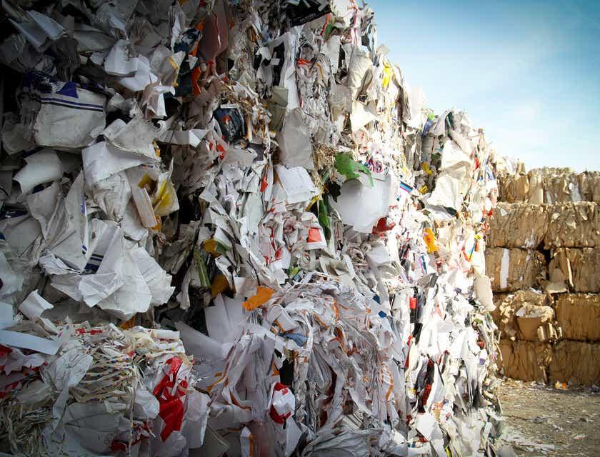 Nombres para empresas de transporte y eliminación de basura
