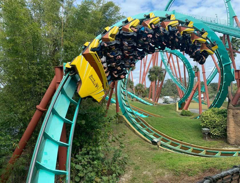 Amusement Park Business Names