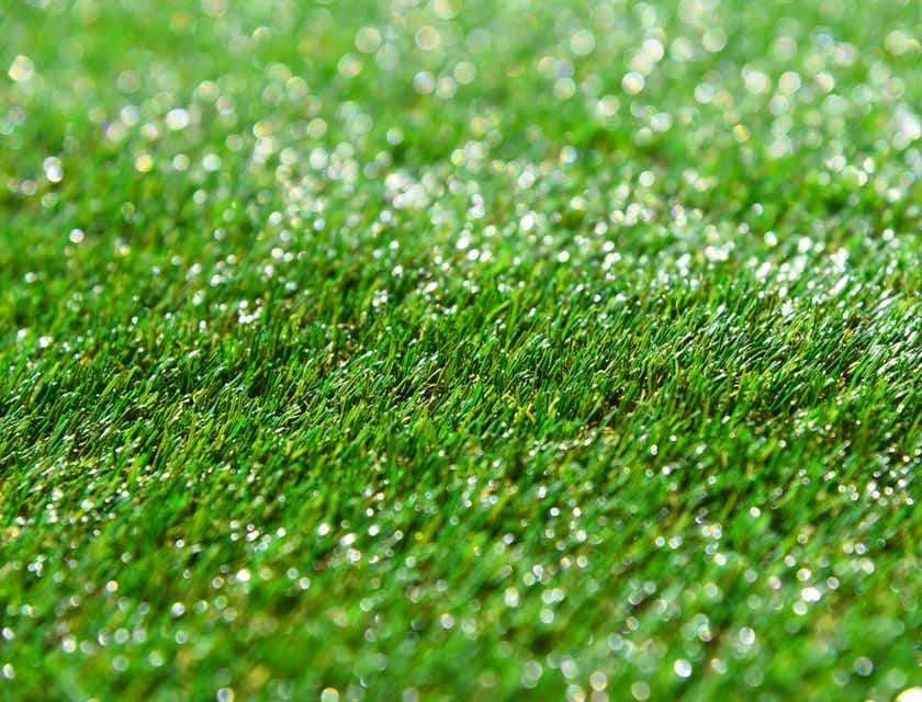 Artificial Turf Business Names