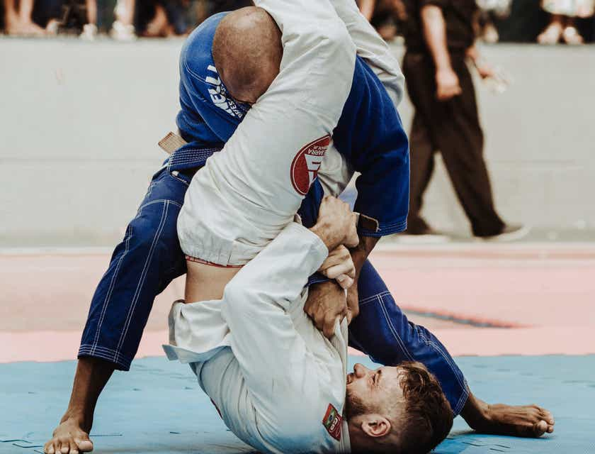 Brazilian Jiu-Jitsu Business Names