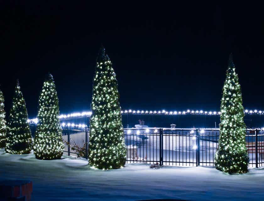 Christmas Tree Business Names