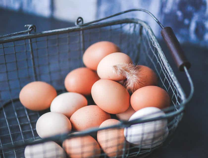 Nombres para negocios de huevos