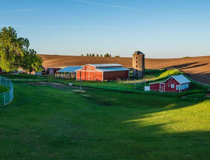 Farm Business Names