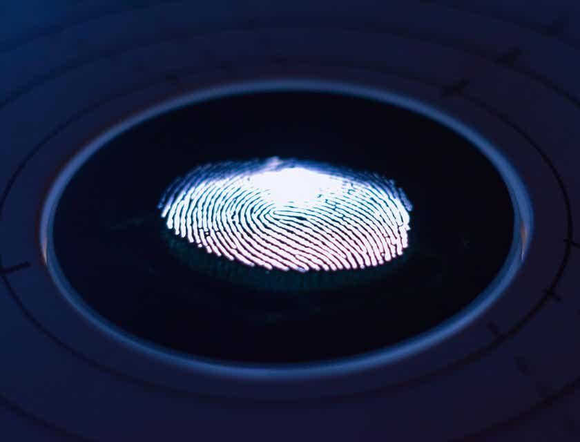 Fingerprinting Business Names