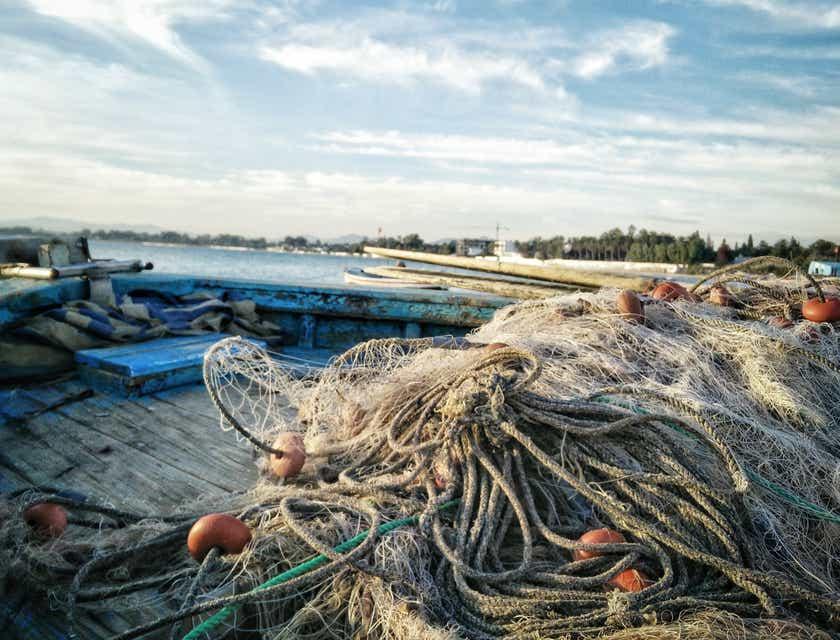 Fishing Business Names