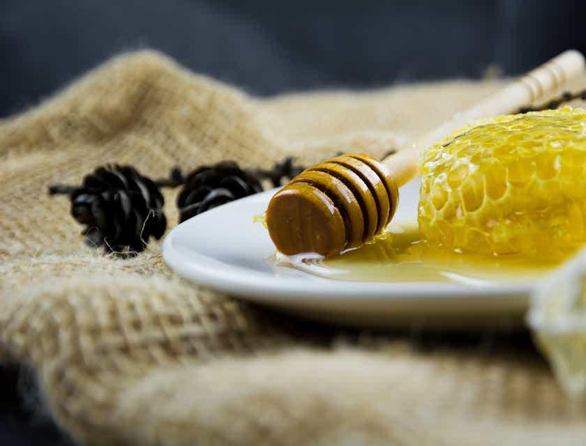 Firmennamen für Honig-Geschäfte