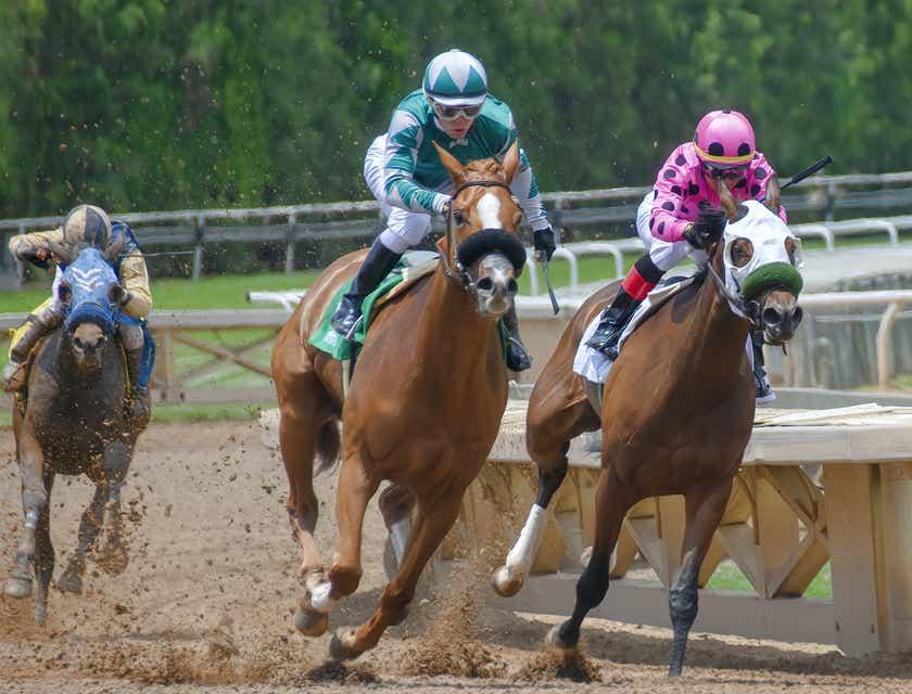 Horse Racing Club Names