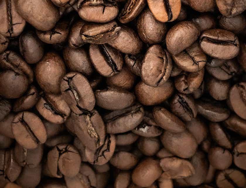 Nombres para empresas de café de Acatenango