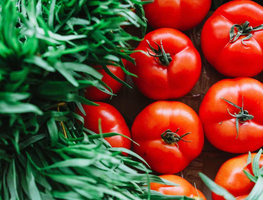 Nombres para empresas de hortalizas