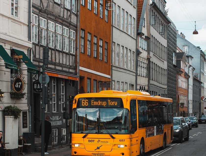 Nombres para empresas de metrobuses