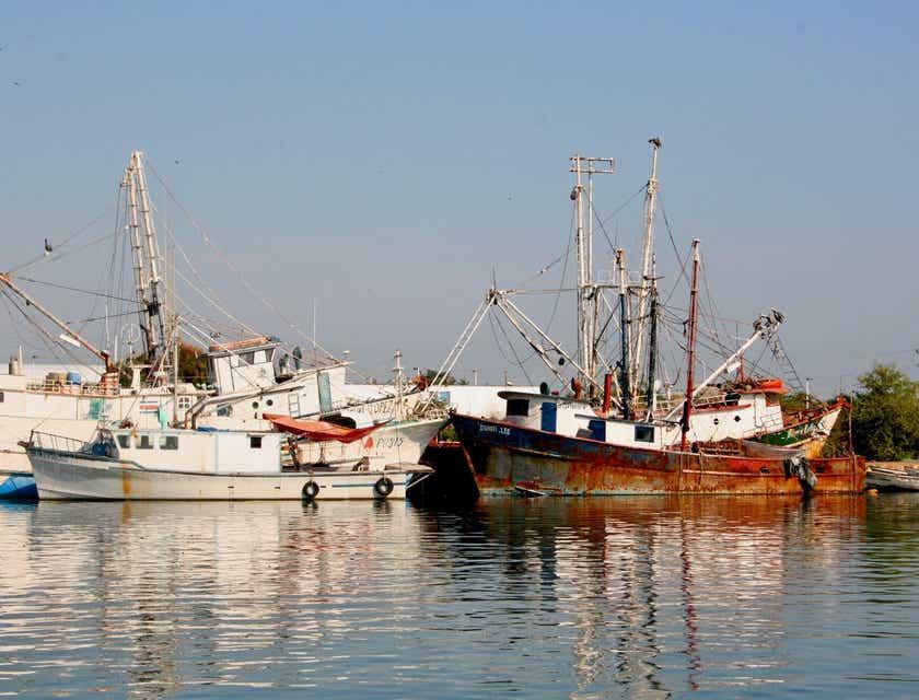 Nombres para empresas pesqueras