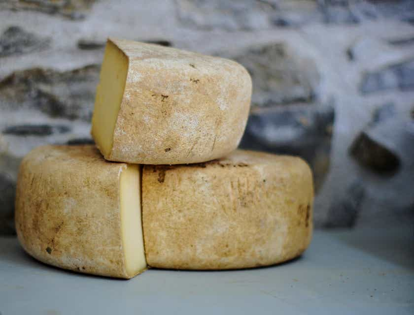 Nombres para negocios de queso de Tafí