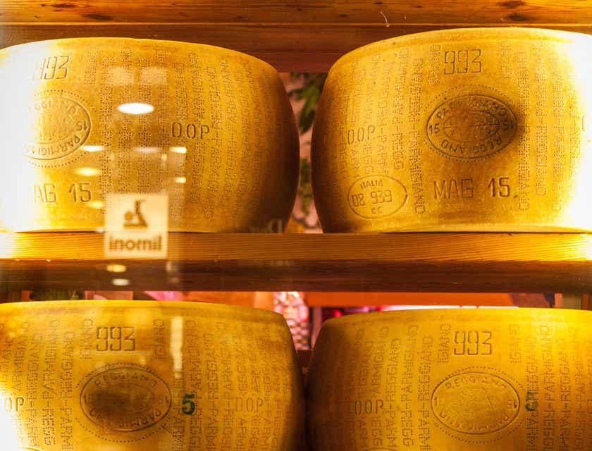 Nombres para negocios de queso reggianito