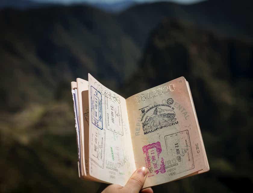 Passport & Visa Services Business Names
