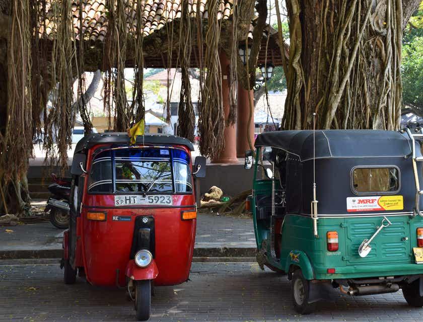 Pedicab Business Names