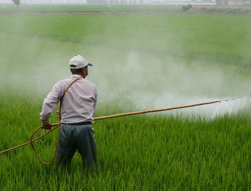 Pest Control Business Names