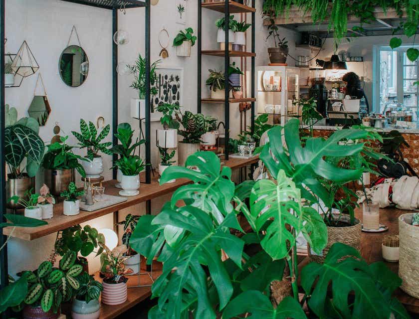 Plant Shop Names