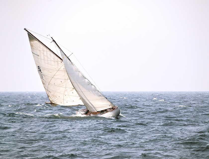 Sailing Business Names