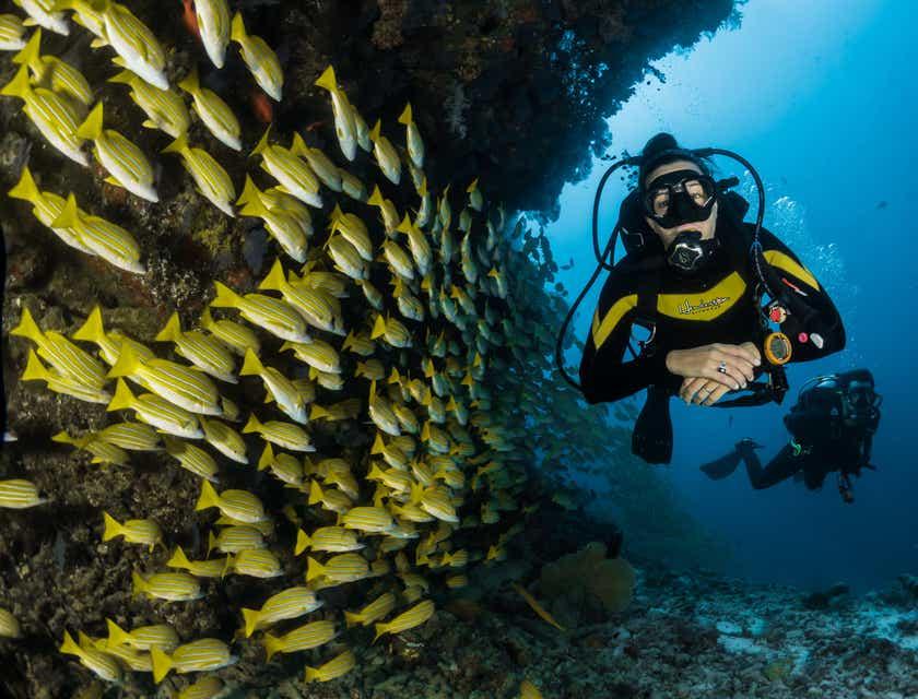 Nomi per Centri di Immersioni Subacquee